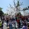 12 auburn oaks