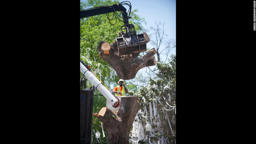 A crane pulls off the top of the trunk Tuesday.