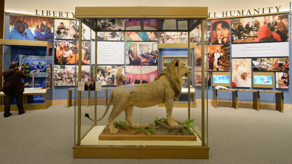 Tanzanian President Jakaya Kikwete presented this lion, here presented at the library, to George W. Bush during his trip to Africa in 2008.