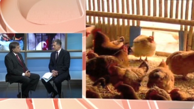 Virologist: Bird flu 'cause for concern'