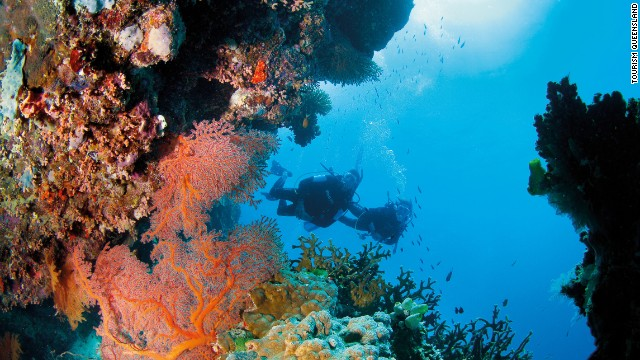 Environmentalist discusses reef dangers