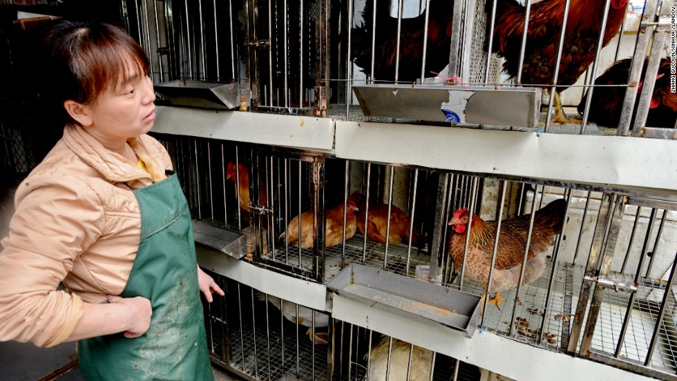 A vendor stands by her chicken coop in Fuqing, southeast China's Fujian Province on April 26.  At least 20 people have died from the virus which, while common in birds, hadn't been detected in humans before the first cases were reported in March.