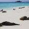 UNESCO Galapagos 2
