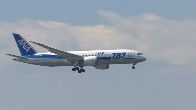 magnay japan dreamliner back_00000522.jpg