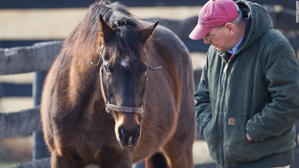 """Clever Allemont and <a href=""""http://www.oldfriendsequine.org/"""" target=""""_blank"""">Old Friends</a> Retirement Center founder Michael Blowen spent quality time together in the paddock as the elderly racehorse lived out his golden years. """"Because people cared about Clever Allemont, he is with us,"""" Blowen said in 2013 of the horse rescued from a kill auction. """"Aller"""" was blind in one eye."""
