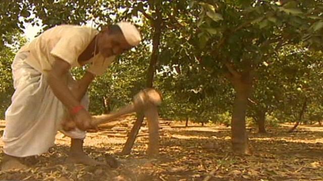 intv india drought climate change sahgal_00001702.jpg