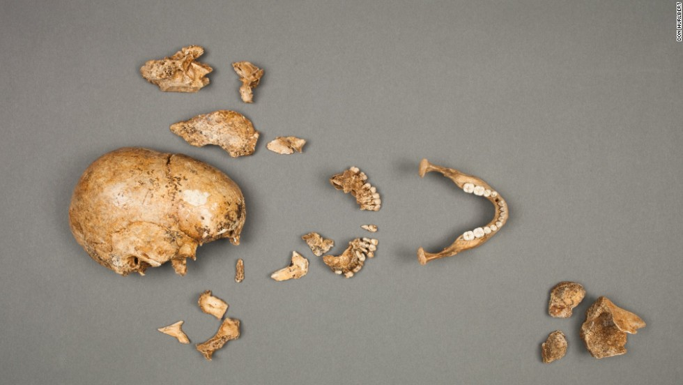 Archaeologists from the Smithsonian Institution and the Jamestown Rediscovery Project announced evidence of survival cannibalism during the winter of 1609-10 in historic Jamestown, Virginia. The findings answer long-standing questions about the occurrence of such a practice. <br />