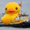 rubber duck in hong kong 4