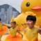 rubber duck in hong kong 7