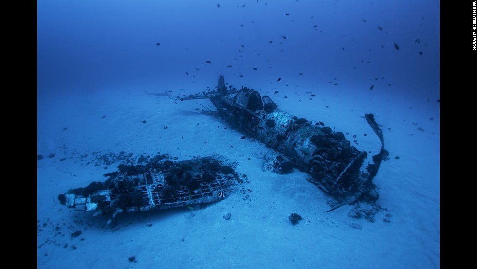 A Vought F4U Corsair ended up in Hawaiian waters a few years after World War II ended. The bent-wing Corsair was a fighter-bomber that saw service on aircraft carriers. Even in their death, Eckell finds the airplanes to be beautiful, still majestic while lost in nature's vastness.