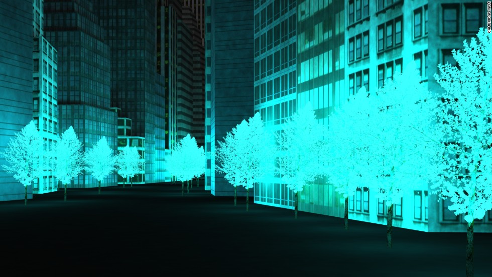One group of American students has even managed to bio-engineer a glowing plant that could replace conventional lamps. Students at the University of Cambridge's genetics department created glowy bacteria that could one day lead to a city lit completely by iridescent trees.