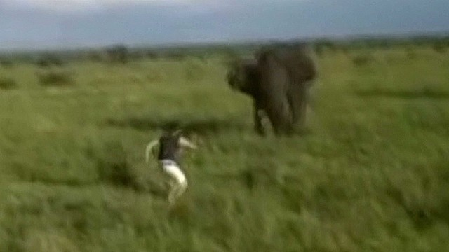 tsr moos man charges elephant_00003627.jpg