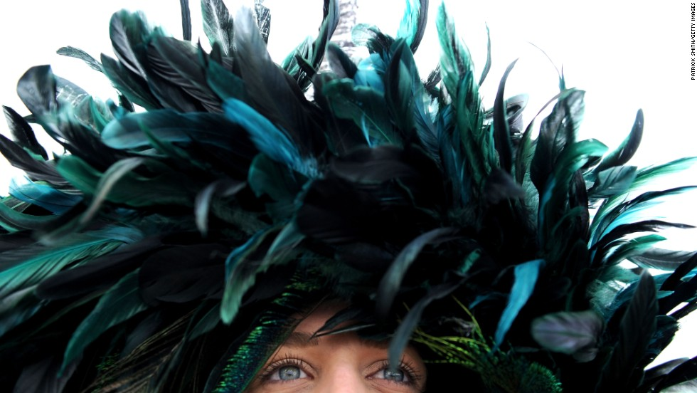 A detail view of a feathered hat worn by a spectator.