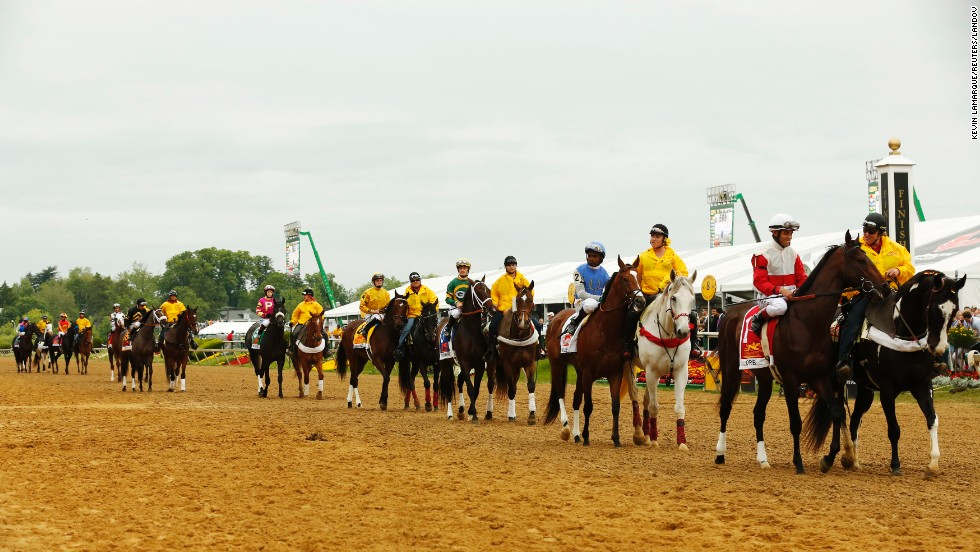 Heavily favored orb, with jockey Joel Rosario in the irons, leads the field onto the track before the race.