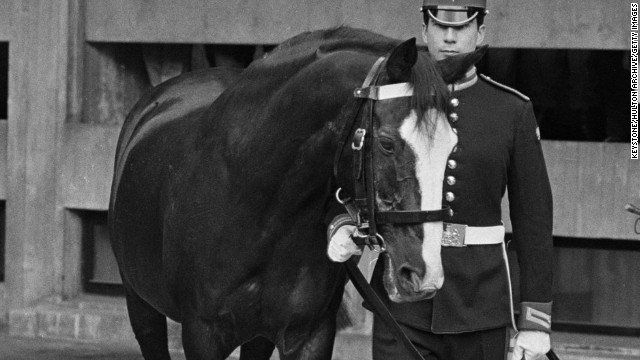 Sefton was one of the horses injured in Hyde Park on July 20, 1982, when an IRA car bomb killed five soldiers.