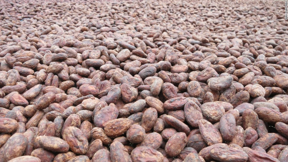 "In many areas of the country, farmers have <a href=""http://www.cnn.com/2010/WORLD/americas/02/10/peru.chocolate/index.html"" target=""_blank"">abandoned cocaine production</a> in favor of lucrative and highly-prized cacao beans."
