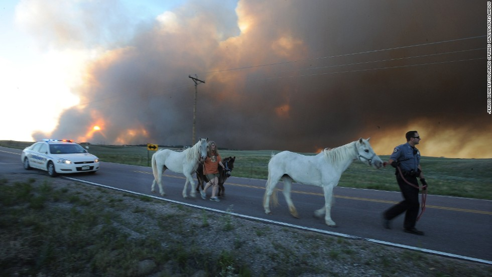 El Paso County Sheriff's Deputy Dan Cukowski helps Linda Davies walk her livestock out from the evacuated area in Colorado Springs on June 11.