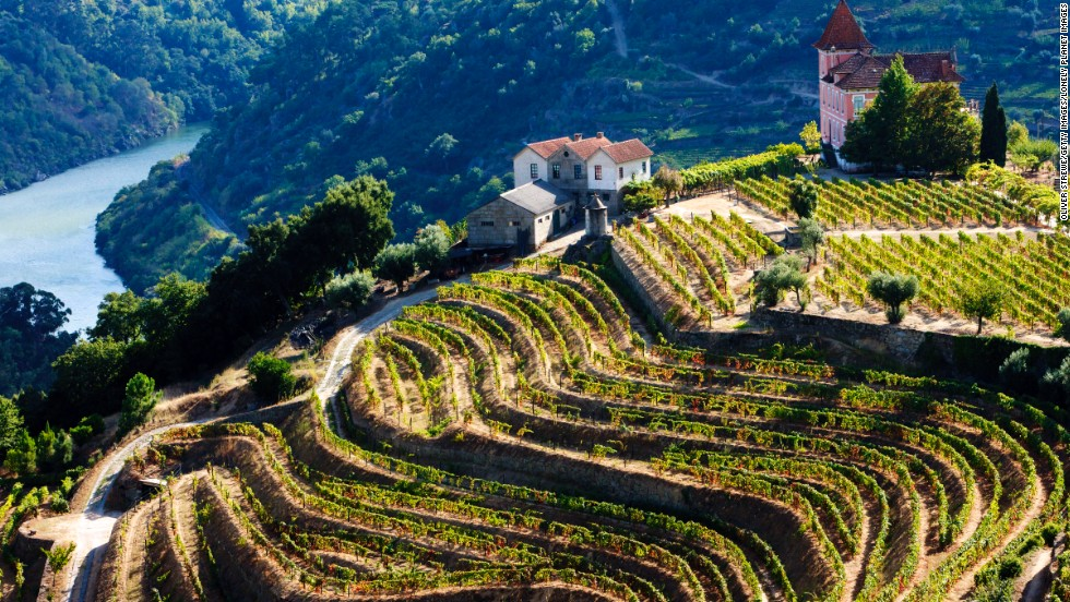 The birthplace of port, Porto is surrounded by the vineyards that produce its signature drink.