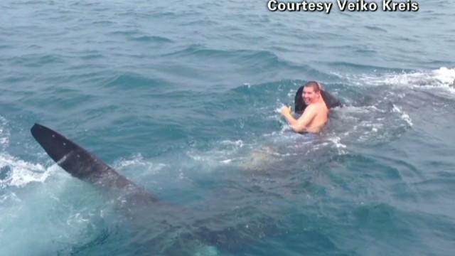 exp pmt chris kreis rode the shark_00003422.jpg