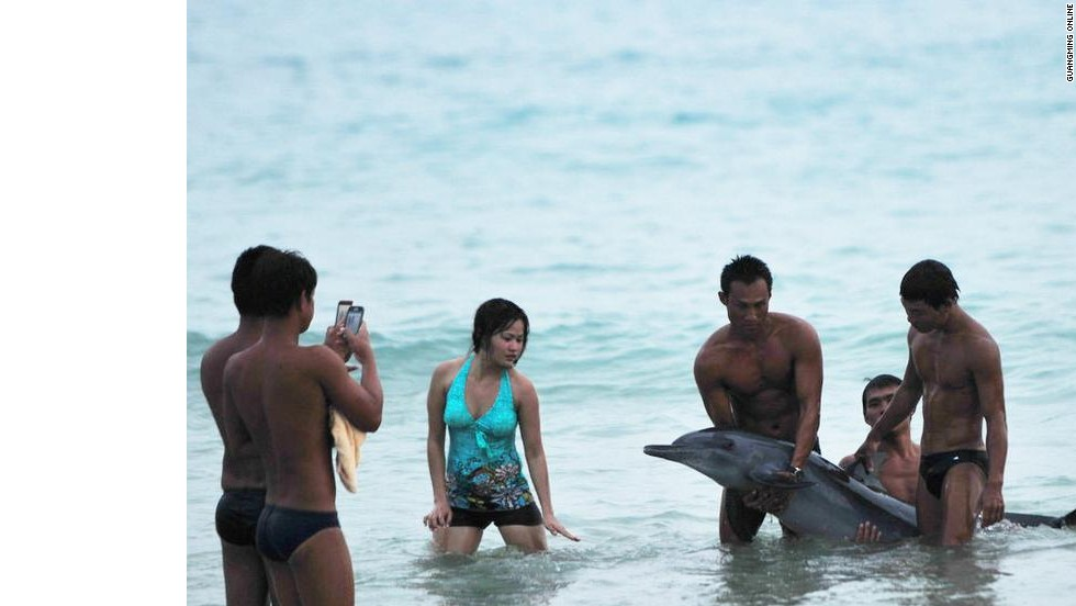 "Chinese netizens were <a href=""http://www.cnn.com/2013/06/18/world/asia/china-dolphin-controversy/index.html"">outraged</a> when photos surfaced of tourists posing with a dying dolphin in Hainan, in June 2013. Article 14 of China's new tourism law states: ""Tourists shall observe public order and respect social morality in tourism activities, respect local customs, cultural traditions and religious beliefs, care for tourism resources, protect the ecological environment, and abide by the norms of civilized tourist behaviors."""