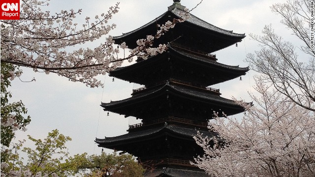 The Toji Pagoda in Kyoto, Japan.
