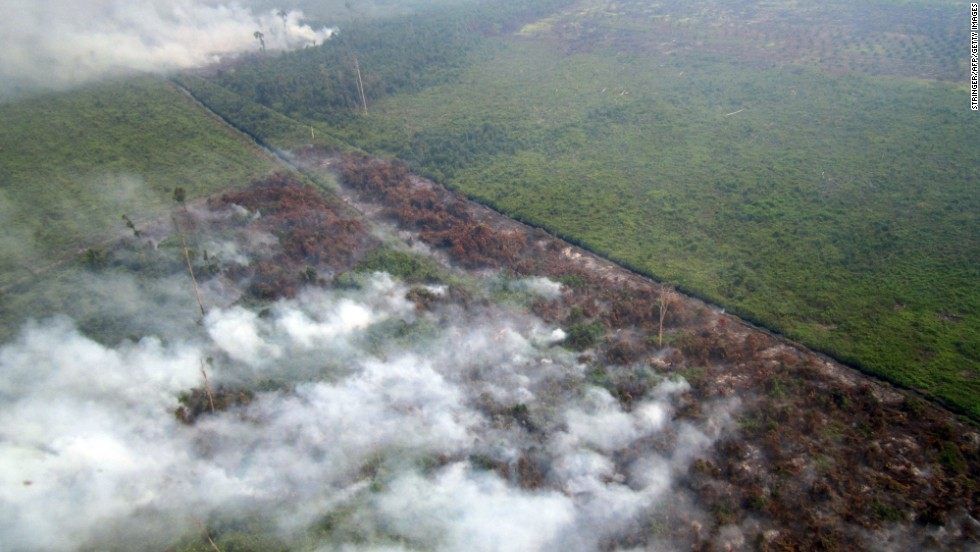 An aerial photograph taken on June 17 showed smoke billowing from fires in areas surrounded by agricultural plantations in Rokan Hilir town in Sumatra, about 280 kilometers (173 miles) west of Singapore.