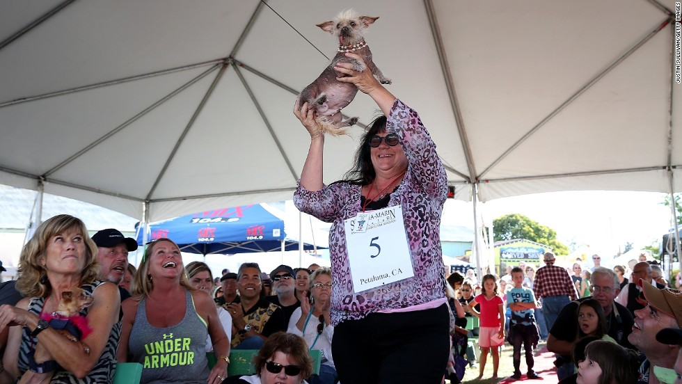 Linda Elmquist holds her dog Josie, a Chinese Crested, on June 21.