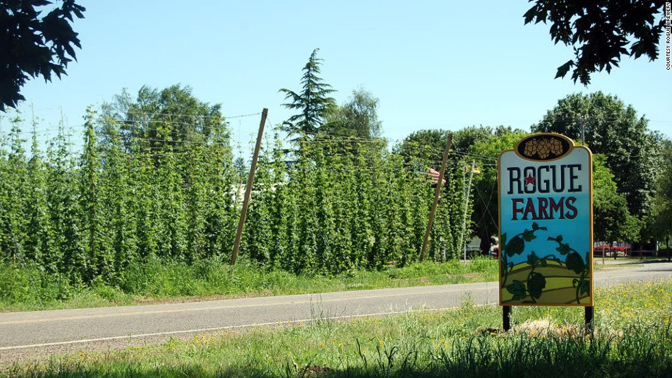 Rogue Farm's Hop 'N Bed, a new B&B inside the property's 100-year-old farmhouse, gives guests access to daily facility tours as well as the tasting room, which overlooks land that for multiple generations has grown some of the world's most sought after hops.