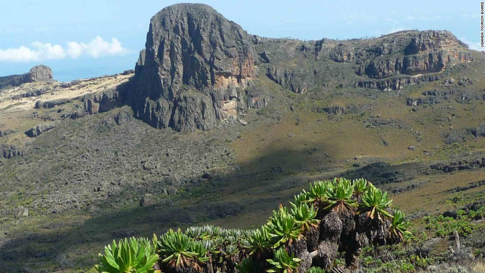 Rising along the Ugandan-Kenyan border, Mount Elgon is an extinct volcano ideal for extended hikes and bird watching. The best times to come here are from June to August and December to March. <em>Peak: 4,321 meters.</em>
