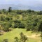golf course africa-leopard