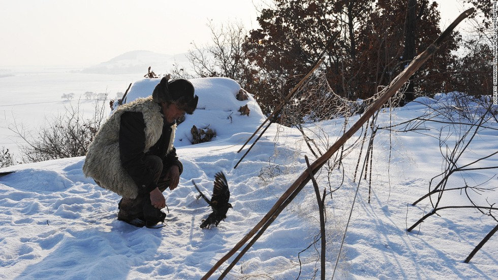 Trained falcons can hunt 10 to 20 pheasants per day, which are sold for up to RMB 150 ($24) each at a local market.