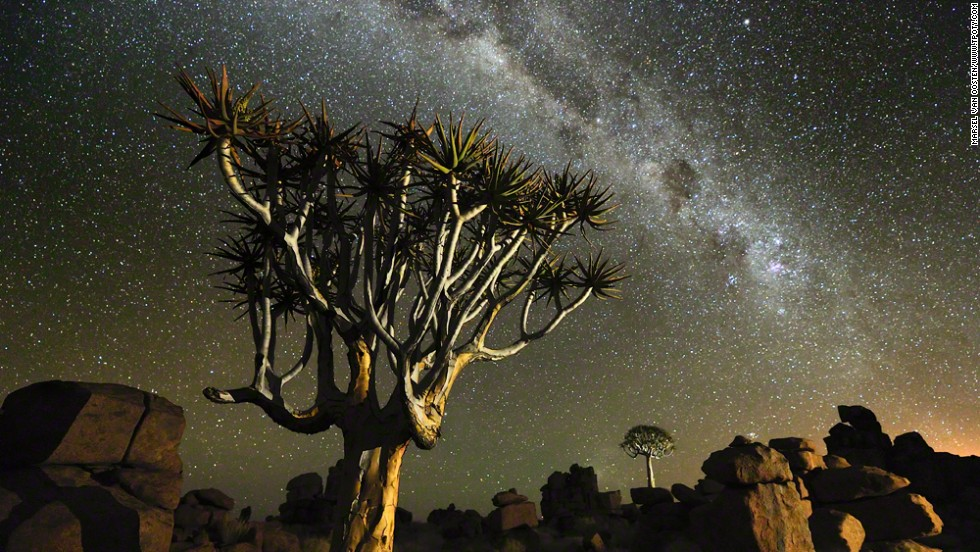"Namib desert, Namibia: quiver trees beneath the stars; Marsel van Oosten, Netherlands; winner, Wild Planet portfolio. Oosten swapped his former award-winning career as an advertising art director for the more precarious life of a wildlife photographer. <a href=""http://ireport.cnn.com/topics/337949"">iReport: send us your best travel snaps</a>"