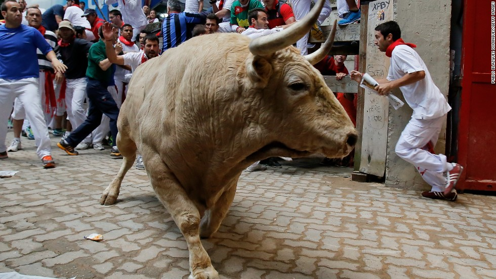 A fighting bull enters the bull ring on July 13, the eighth day of the running of the bulls.