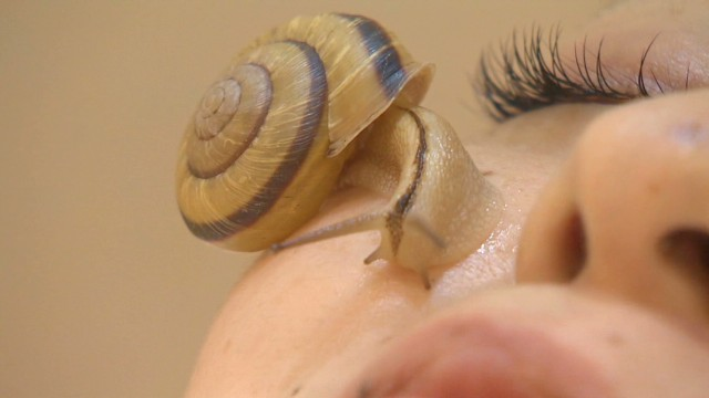 newscenter japan snail facials_00003717.jpg