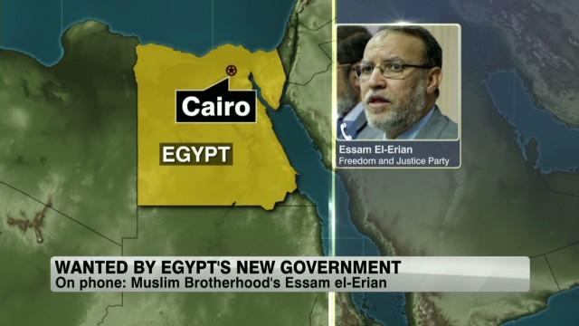 exp Egypt-Essam-El-Erian-Amanpour_00022930.jpg