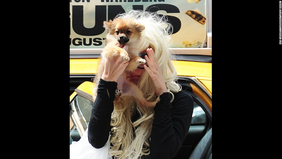 "Bynes uses her dog to block her face from photographers while shopping in Chelsea on July 10, 2013, in New York City. On July 24 of that year, Bynes was detained for a mental health evaluation after being ""involved in a disturbance in a residential neighborhood"" in  Thousand Oaks, California. She was then placed under an involuntary psychiatric hold for four months."