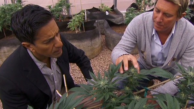 Dr. Sanjay Gupta changes mind on weed