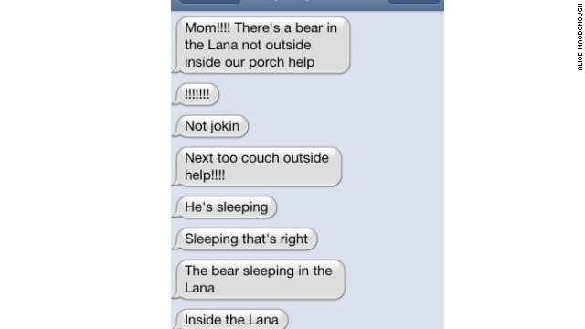 Texts from the family that found the bear napping in their home in Florida.