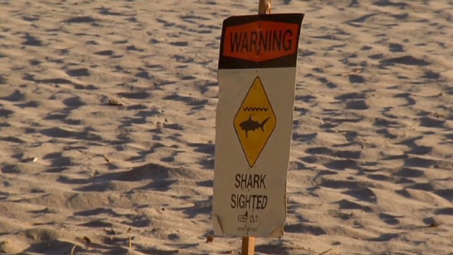 Tourist dies after Hawaii shark attack