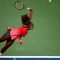 Serena top
