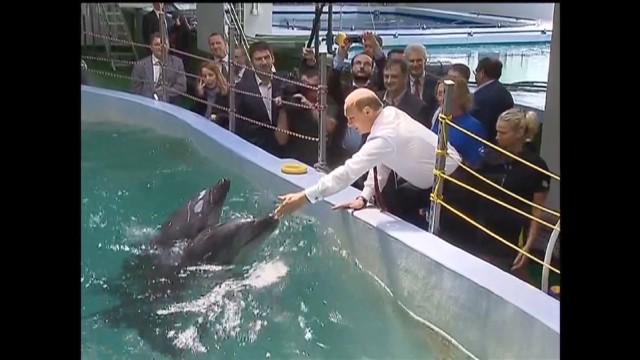 Putin visits the zoo_00000000.jpg