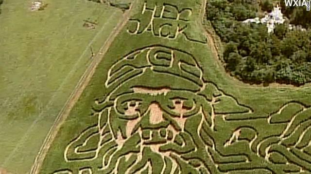 mxp vo duck dynasty corn maze_00003403.jpg