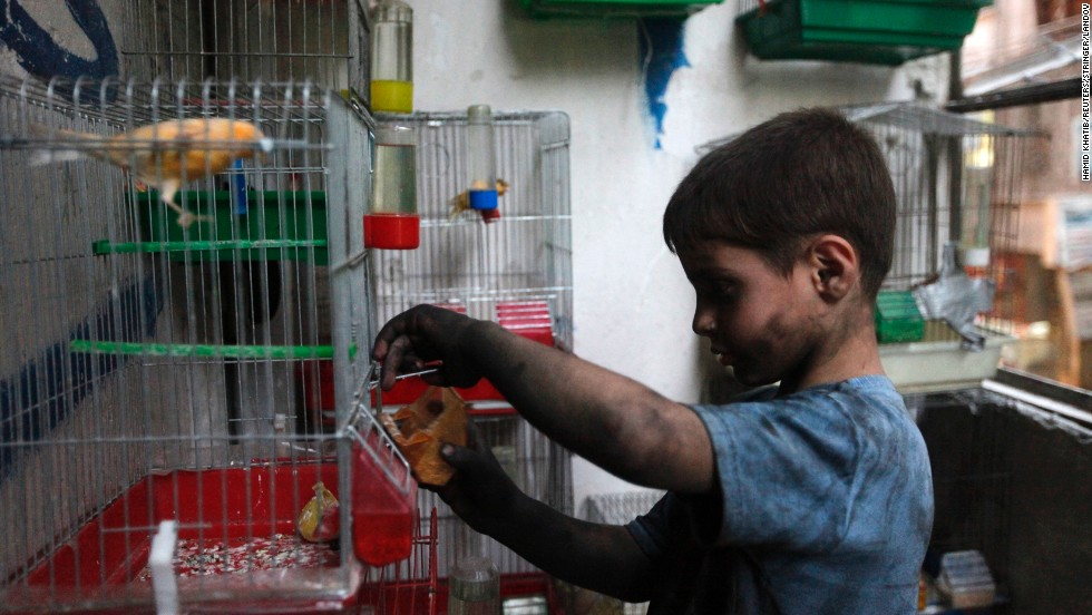 Issa feeds his pet bird at his home in Aleppo.