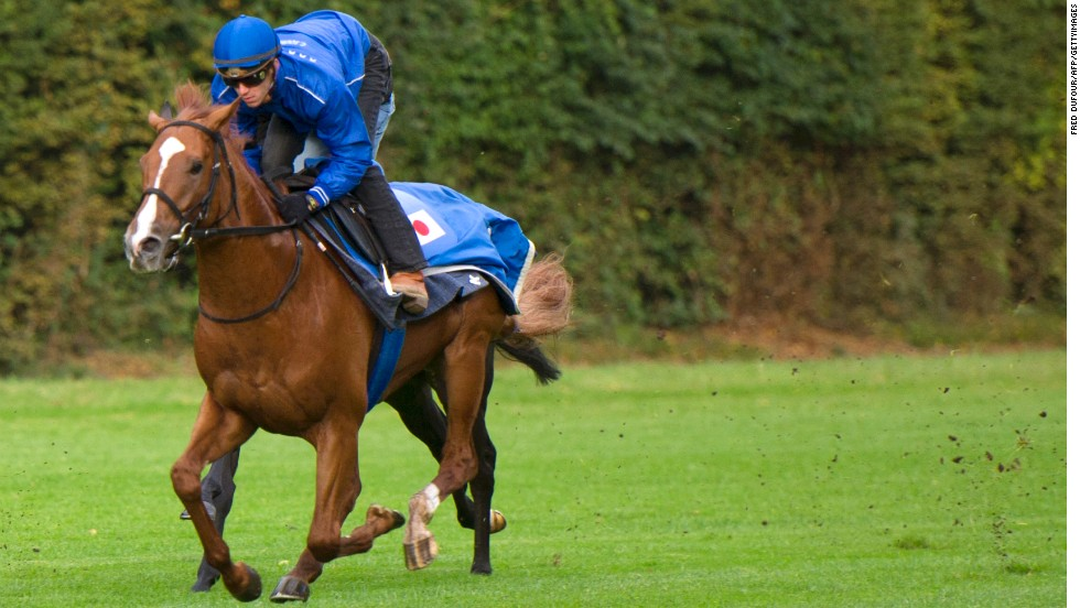 Japan's best bet at Longchamp this year is Orfevre, which has competed there before and is among the favorites to win a race that has become an obsession for his country's punters.