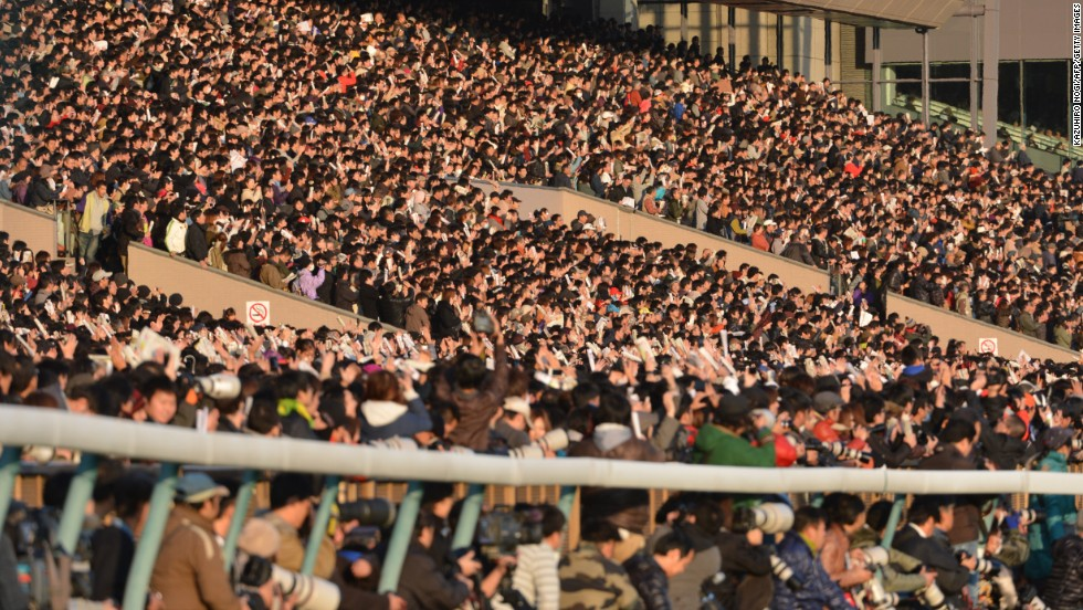 arc horse racing