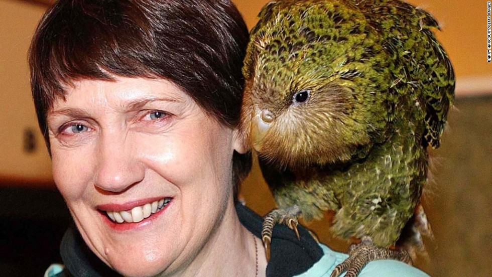 On the right you'll notice a somewhat ugly bird named the kakapo, a critically endangered parrot. It's the only flightless parrot in the world and has very muscular thighs, according to the British Science Association. On the left is former New Zealand Prime Minister Helen Clark.
