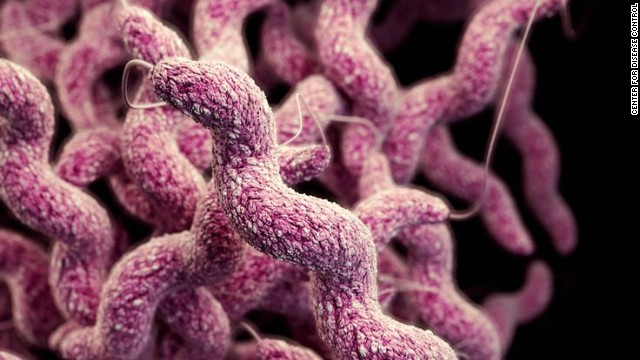 Drug-resistant campylobacter bacteria. Multi-drug-resistant infections in humans have been linked to antibiotic use in animals.