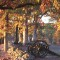 fall foliage gettysburg