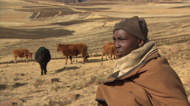 spc inside africa lesotho herd education a_00015809.jpg