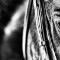 crowhurst horse eye